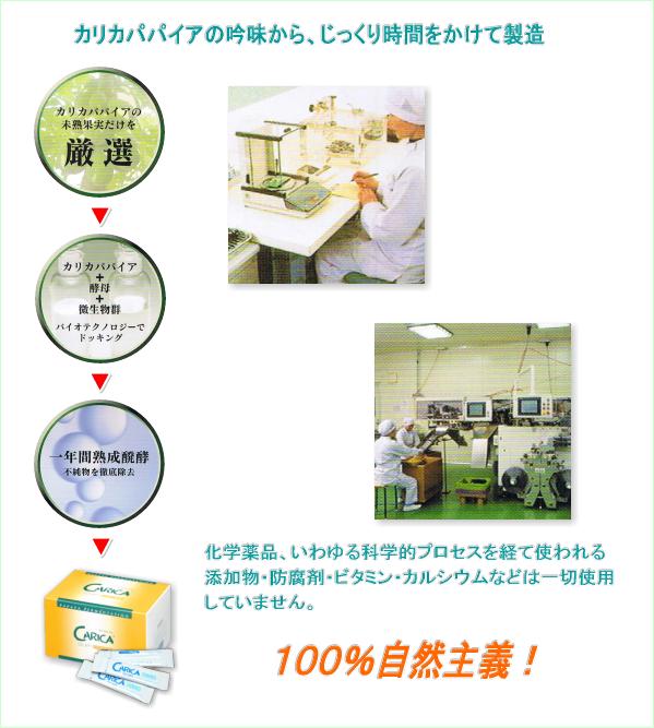 カリカセラピPS501 パパイア発酵食品