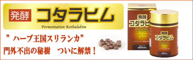 発酵コタラヒム