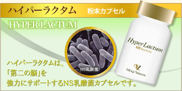NS乳酸菌 ハイパーラクタム
